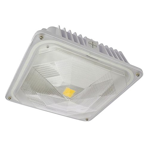 Led Canopy Lights: Energy Efficient LED